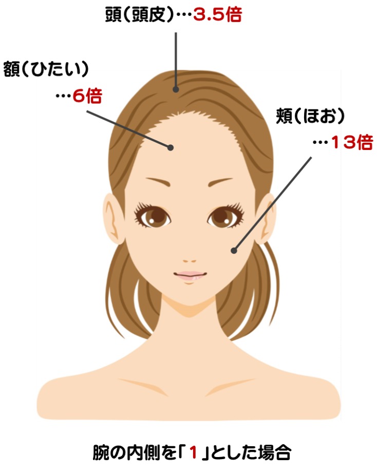 【化学物質・薬品】は【皮膚から吸収される】を説明した画像