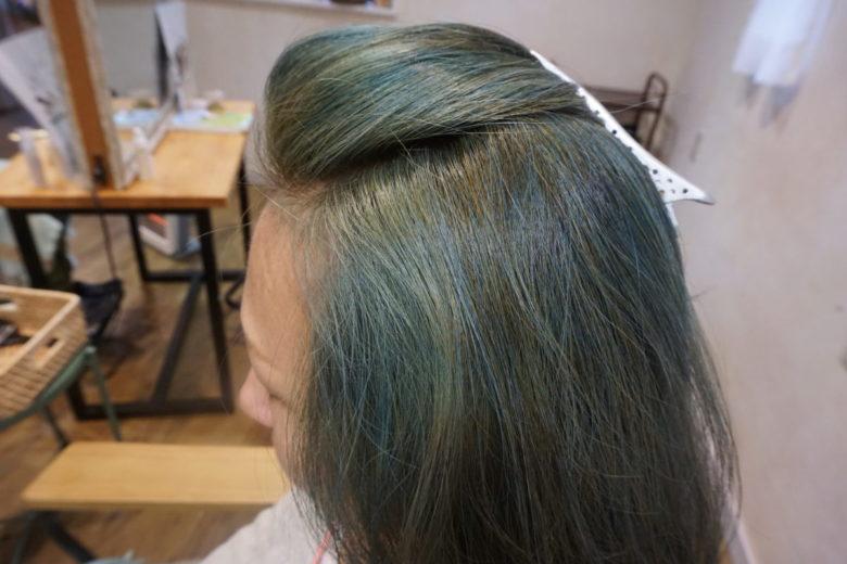一旦ブリーチ(脱色)した髪に、太陽と大地のヘナのアッシュ系で染めた後の画像