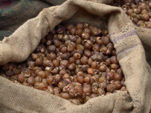 ムクロジ ソープナッツ 無患子 はぐみシャンプー エコ洗い 天然100%洗剤 オーガニックシャンプー